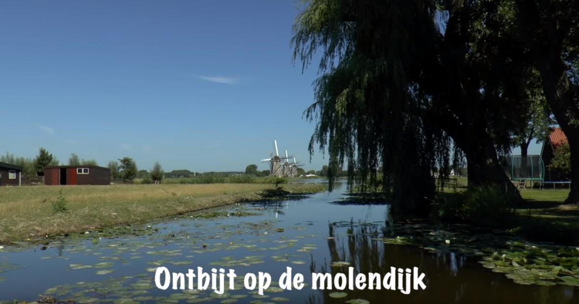 15-07-2018: Midzomer Molenwijk ontbijt